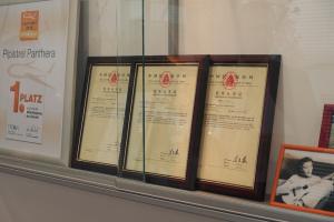 pipstrel certificates